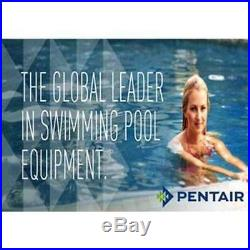 Pentair 2 Multiport Valve Pool Spa Backwash Triton DE Sand Quad Filter (Used)